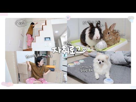 자취로그 EP.1ㅣ나의 첫 집밥 요리👩🏻🍳ㅣ새 가구들과 엄청난 이사선물 언박싱!ㅣ로렌이 터치벨 도전기🛎 [냔지일기]
