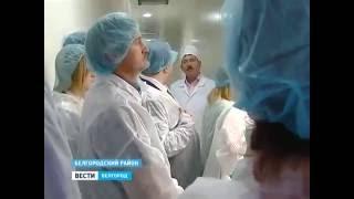 Смотреть видео Белгород и Санкт-Петербург стали ближе онлайн