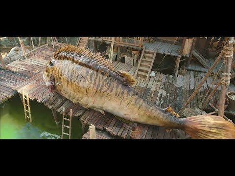 Journey To The West Clip Fish scene in reverse   Blockbuster Reverse