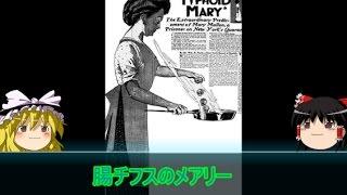 【ゆっくり歴史解説】黒歴史上人物「腸チフスのメアリー」