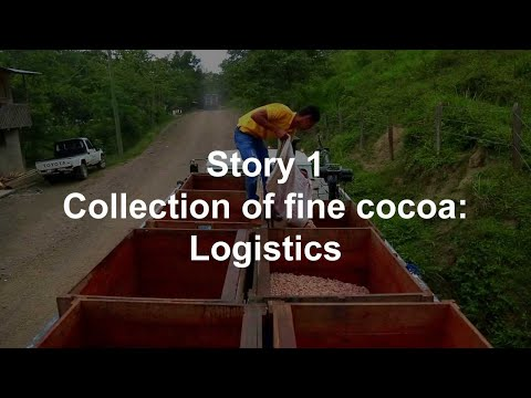 Story 1 Collection of fine cocoa: Logistics  | Ingemann Fine Cocoa