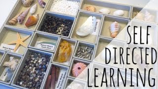 HOMESCHOOL KITS FOR SELF DIRECTED LEARNING + OCEANOGRAPHY UNIT STUDY