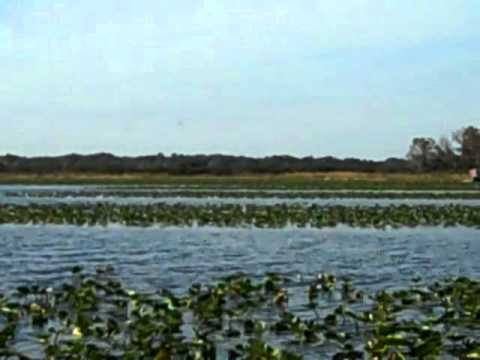 Lake istokpoga bass fishing youtube for Lake istokpoga fishing