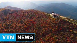 [영상] 완연한 가을에 단풍 절정...발왕산 정상 / YTN