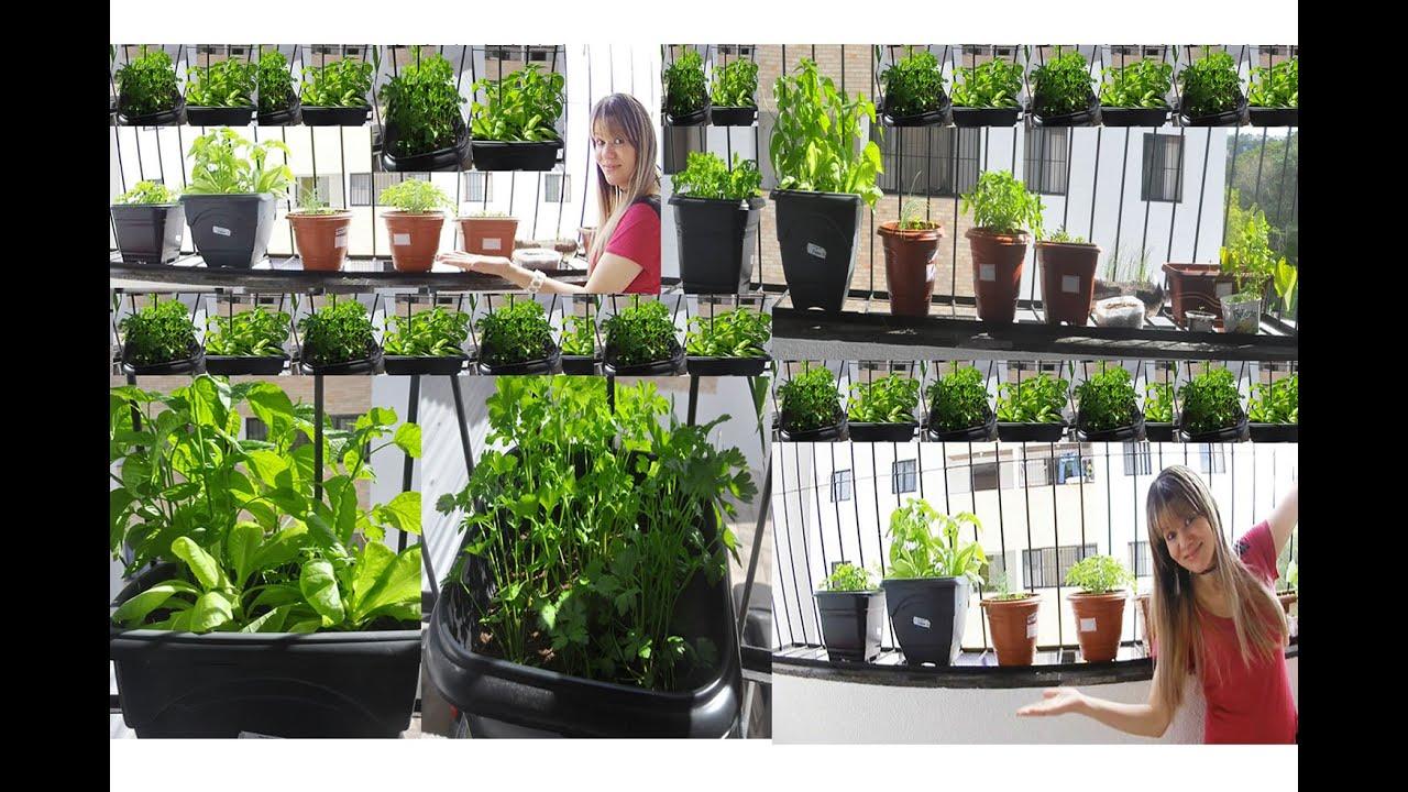 Como Fazer Uma Horta em Apartamento/Casa, Livre de Agrot?xicos e ...