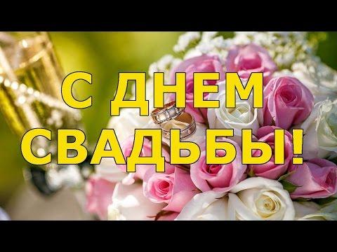 Красивые стихи в день свадьбы - Ржачные видео приколы