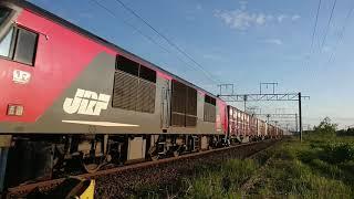 2018.5.27 貨物列車 3051レ