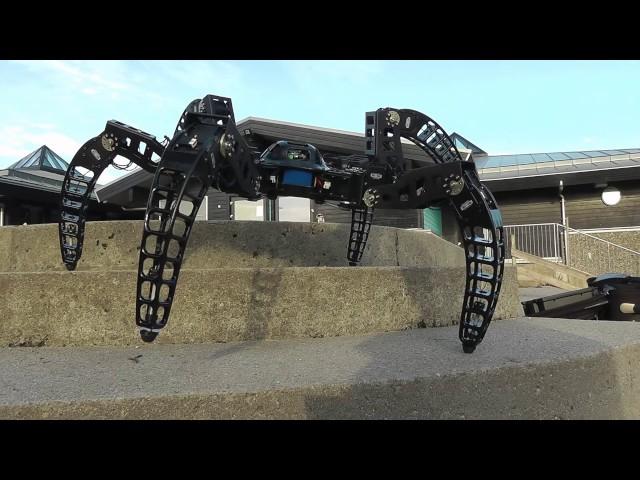 MX-Phoenix hexapod robot outdoor part II