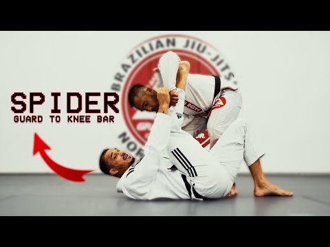 Spider Guard to Knee Bar by Romulo Barral