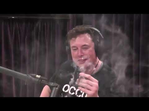 Elon Musk explores consciousness