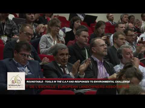 1st European Sorghum Congress - Workshop 5