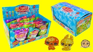 Crystal Babies Surprise Baby Pets Blind Bags Box Unboxing - Cookieswirlc Videos