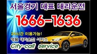 서울대리운전 씨티콜 ☎1666-1636 주,야간 24시…