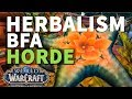 Pollen Punching BfA Herbalism Quest