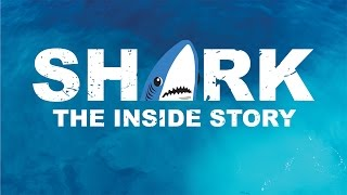 August Burns Red - Shark: The Inside Story