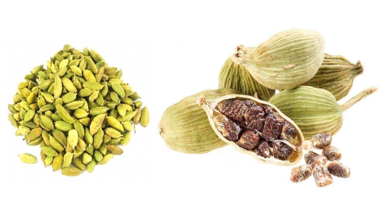 Aponar Doctor | Health Tips In Bangla - বাংলা ...
