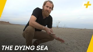 Video California's Accidental Sea Is Shrinking And Exposing Toxic Dust | AJ+ Docs download MP3, 3GP, MP4, WEBM, AVI, FLV Oktober 2017