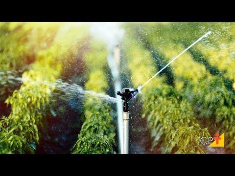 Curso a Distância Projeto de Irrigação por Aspersão