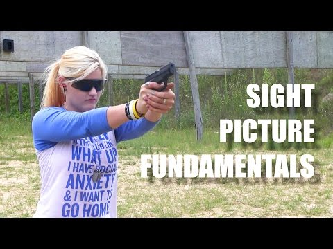 How to Shoot a Gun: Sight Picture Fundamentals FateofDestinee