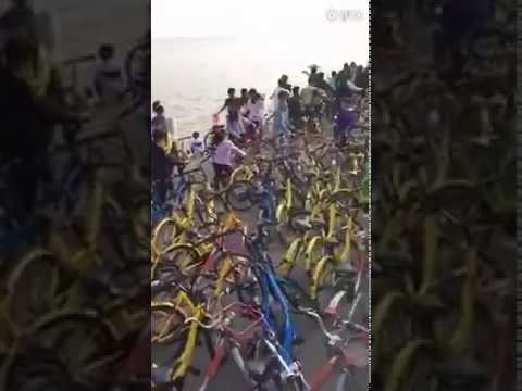 Shenzhen park flooded with thousands of shared bicycles over Qingming Festival holiday