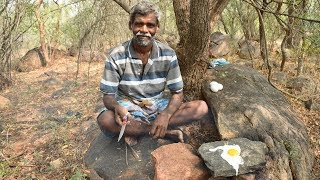 Survival Techniques Cooking and Eating Wild Chicken Eggs in India