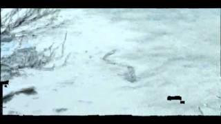 Monstro Estranho em Lago da Islândia (The Iceland Worm Monster)