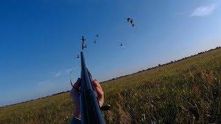 Охота на утку как правильно стрелять видео