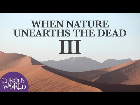 When Nature Unearths the Dead III
