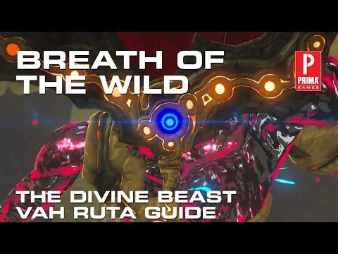 Beast back wild 9 1