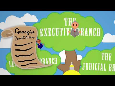 What Does the Executive Branch Do?