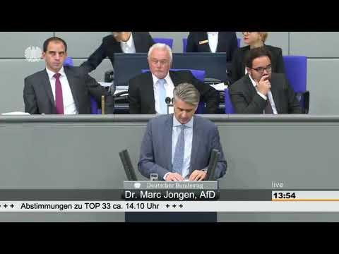 Marc Jongen(AfD) bringt die linksgrünen...