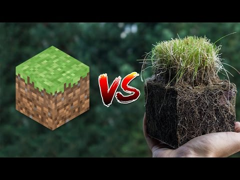 Thumbnail: Minecraft vs Real Life