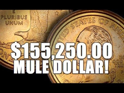 Mule Dollar Worth Up To $155,250.00! $1.25 Piece! Rare & Valuable!