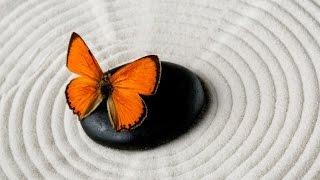 6 Hour Healing Zen Music: Relaxing Music, Meditation Music, Soothing Music, Calming Music ☯2454