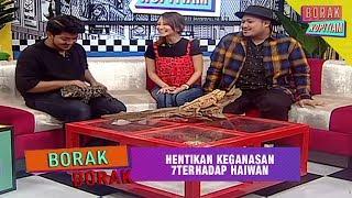 Borak Borak: Hentikan Keganasan Terhadap Haiwan | Borak Kopitiam (30 Jun 2019)