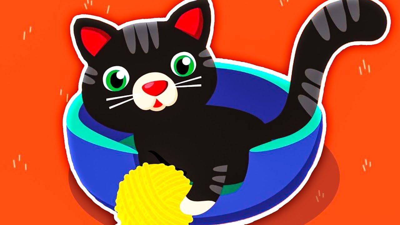 Dziecięce Przeboje Kot Staś Nowy Teledysk Youtube