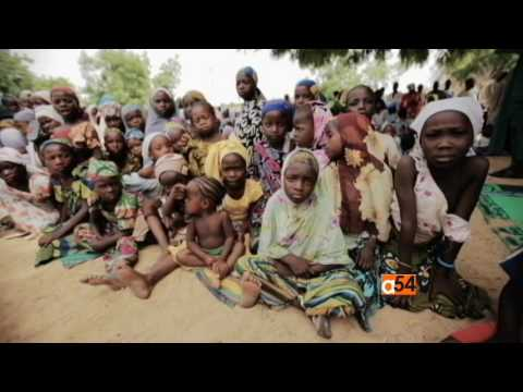 World Health Organization Warning to Africa About Yellow Fever