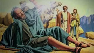 Конспирология. Что заложил глобальный предиктор в библейский проект (Зеленая Тара)