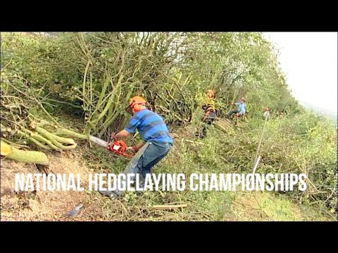 National Hedgelaying Championships