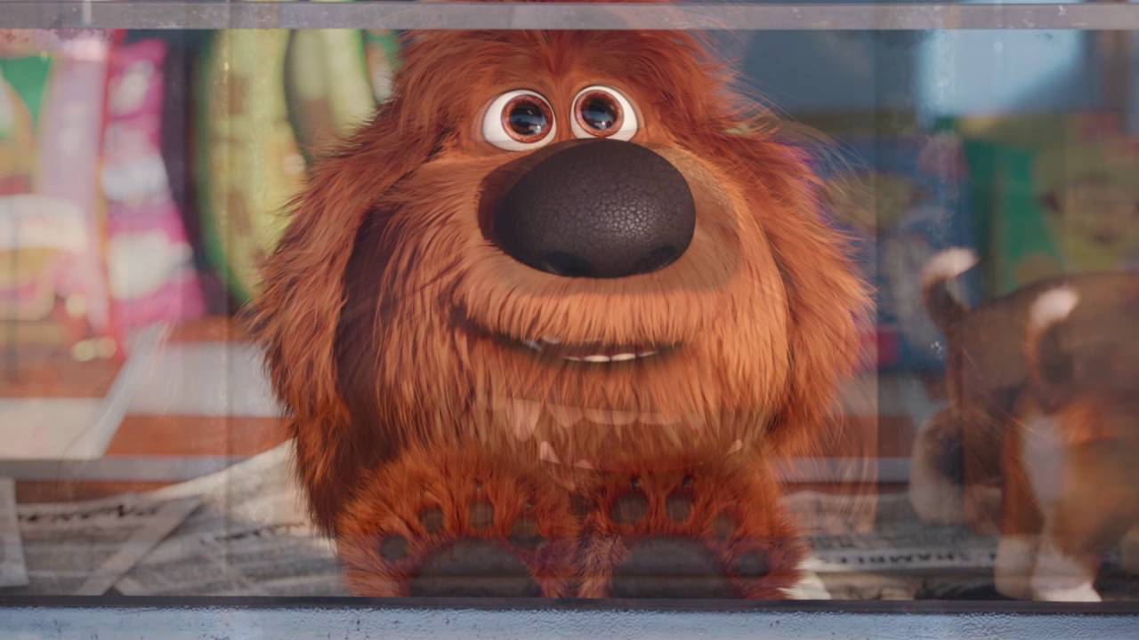 the secret life of pets 2016 meet duke universal