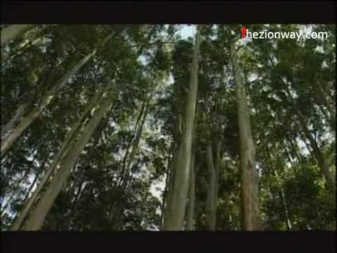 Nin Sneham Ethrayo - Kester | Malayalam Christian Songs