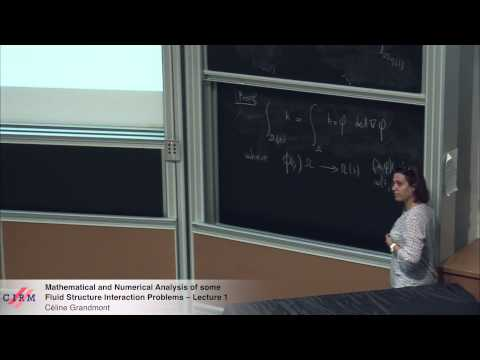 Céline Grandmont: Mathematical and numerical analysis of some fluid structure interaction problems 1