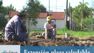 EXTENSION PLAZA SALUDABLE.