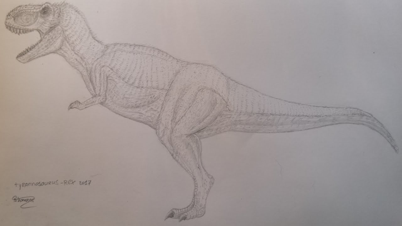 how to draw a tyrannosaurus