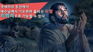 겟세마네 동산에서 예수님께서 기도하며 흘리신 '피땀' 의학적으로 가능할 수 있다
