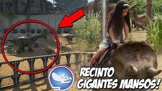 NUEVO RECINTO DE LOS GIGANTES MANSOS! MINI ZOO DE CRIAS DE DINOSAURIO / JURASSIC WORLD ARK PARK