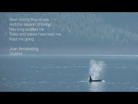 Joan Armatrading - Dry Land