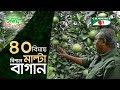 ৪০ বিঘায় বিশাল মাল্টা বাগান | Shykh Seraj | Channel i |