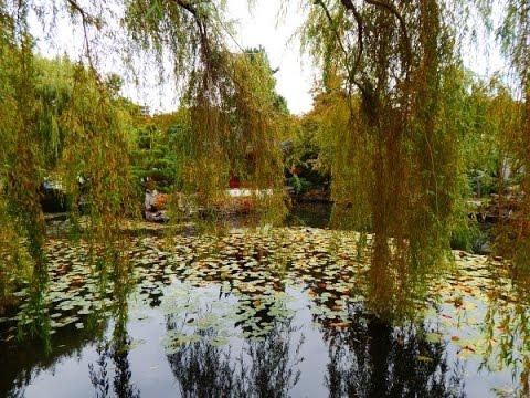 Sun Yat-Sen Chinese Gardens