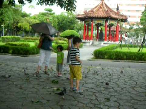 Kids play in the Taipei 228 Park